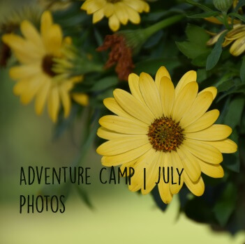 Adventure | July Photos