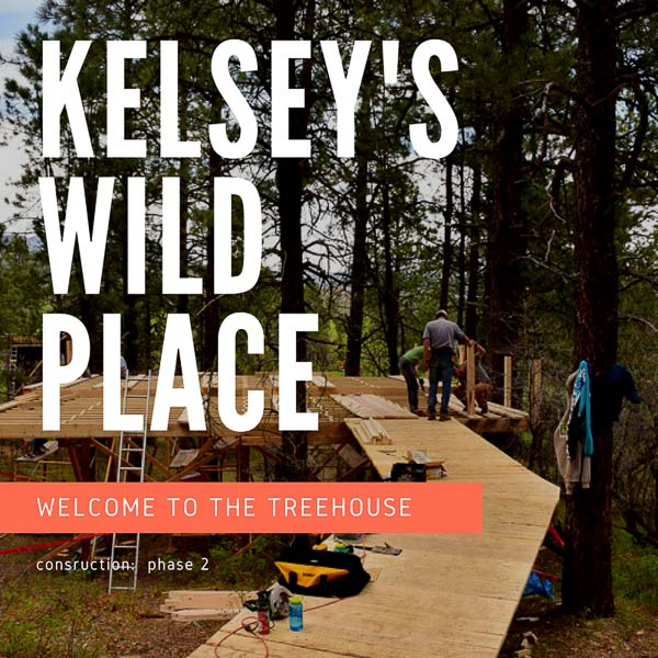 Kelsey's Wild Place: Phase 2